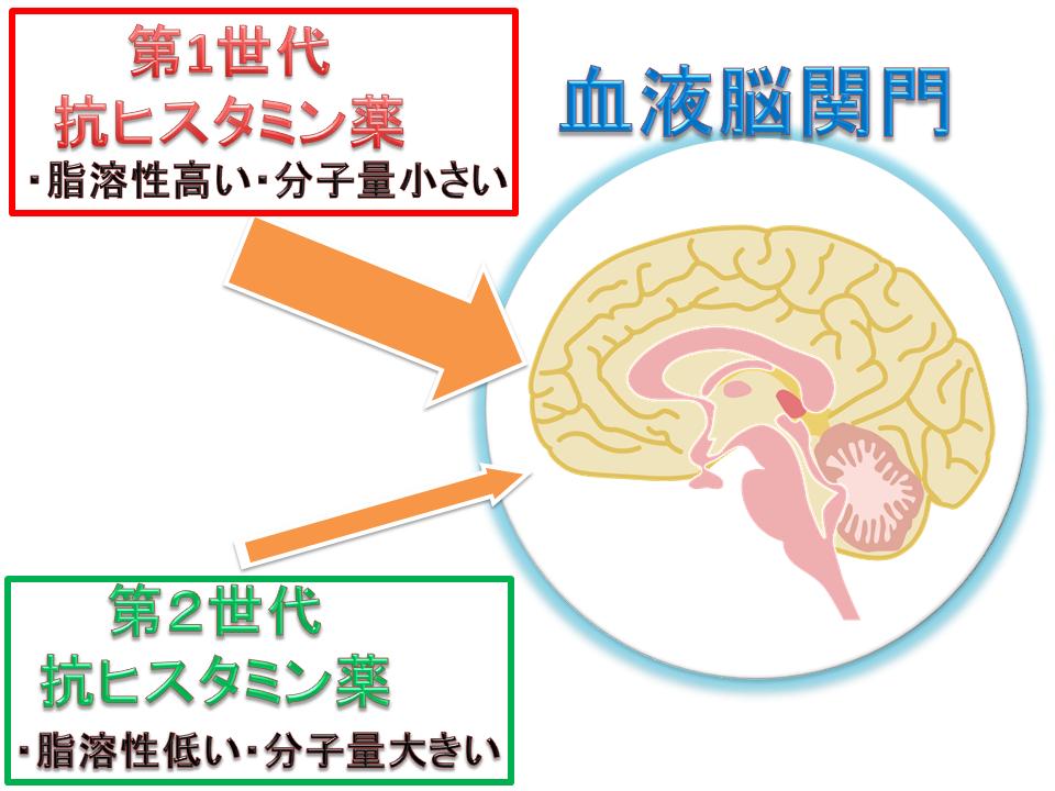 血液脳関門